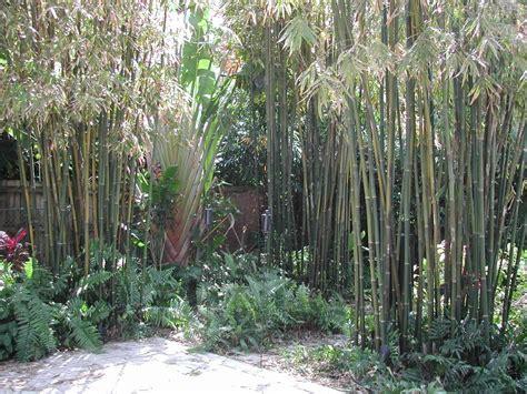 Garden Design 53605  Garden Inspiration Ideas