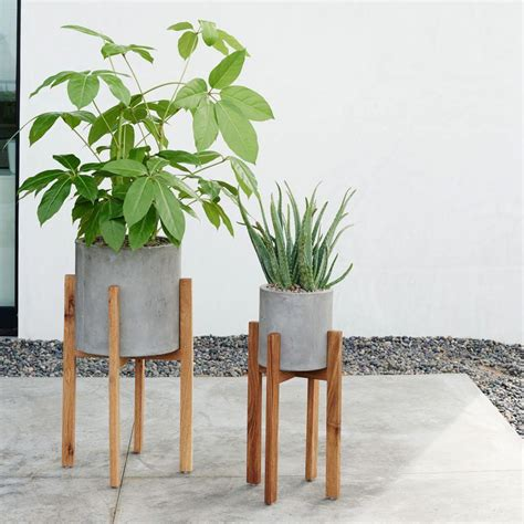 modern plants stylish planters every home needs interiors what to buy red online red online