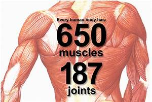 Want To Learn The Secrets To Muscle Hypertrophy