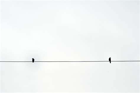 minimalist photography   visual standpointfrom
