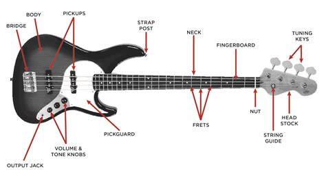 Bass Guitar Buyer Guide