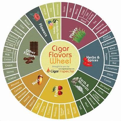 Cigar Flavors Wheel Flavor Components Cigars Main