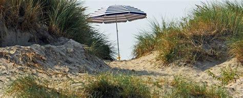 Lato w Belgii najcieplejsze w historii pomiarów ...