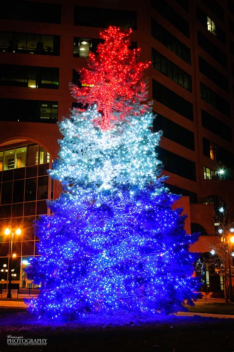 red white and blue lights 1000 images about red blue christmas tree 39 s on pinterest
