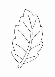 Feuilles D Automne à Imprimer : coloriage une jolie feuille g ante ~ Nature-et-papiers.com Idées de Décoration