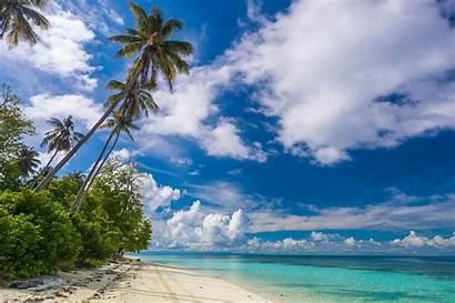 Malaysia Beach Landscape Tropical Nature Palm Summer