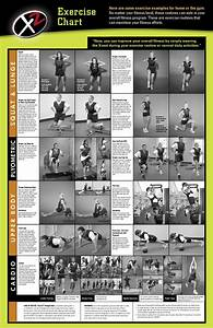 Pin Free-download-dumbbell-exercise-chart-printable ...