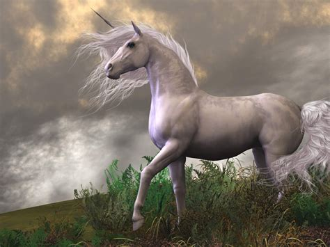 unicorn white horse  mountain fantasy art desktop hd