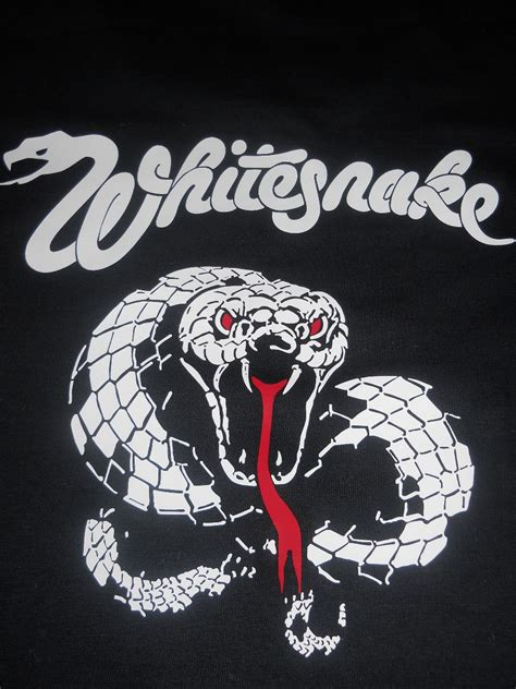 whitesnake wallpaper wallpapersafari