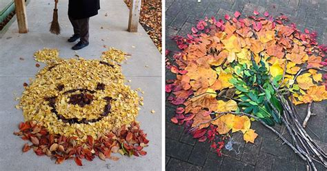 japanese   crazy   fallen leaves turn