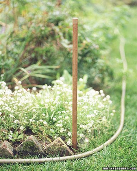 1005 Best Gardening Tips And Ideas Images On Pinterest