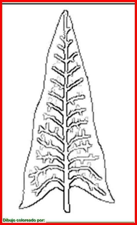dibujo de hojas  colorear  imprimir