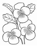 Flowers Coloring Pages...