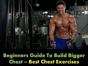 Beginners Guide To Build Bigger Chest