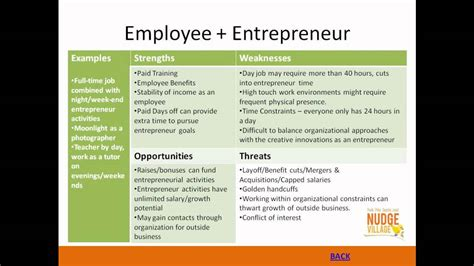 entrepreneurial niche employee entrepreneur youtube