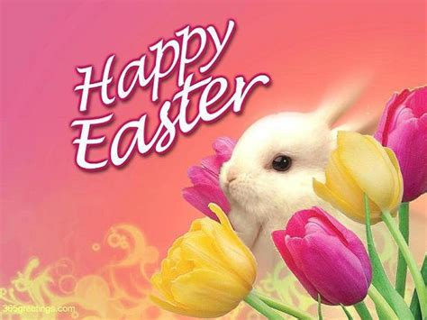 Happy Easter Quotes  365greetingsm. Cover Letter With No Experience In Field. Pert Chart Template Excel 498838. Daily Vehicle Inspection Report Template. Poster Templates Microsoft Word Template. Sites For Job Postings Template. Interview Questions For It Technician Template. Training Agenda Template Free Template. Sample Objective In Resumes Template