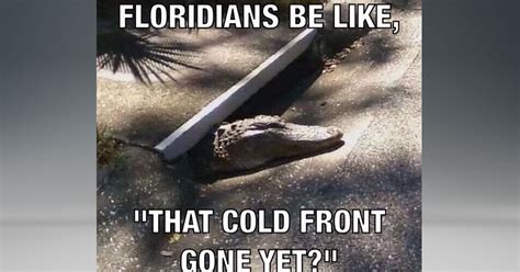 Winter Meme - florida winter meme 28 images florida winter today a chilly 76 degrees today winter is the