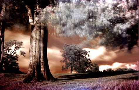 100 Outstanding And Inspirational Infrared Photos