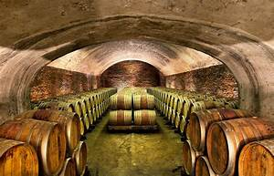 Vino Travels ~ An Italian Wine Blog: The minerality of Gavi with Coppo winery