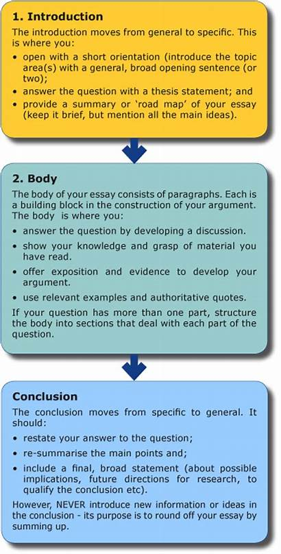 Essay Structure Writing Write Diagram Website Basic