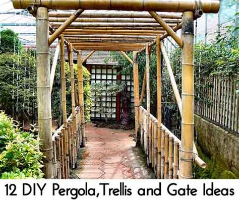 diy pergolatrellis  gate ideas