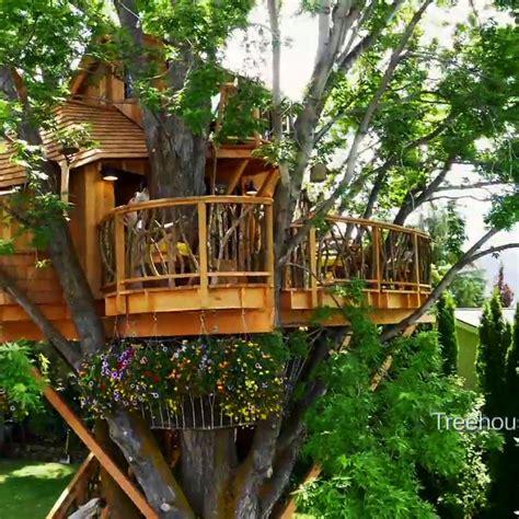 wildest season  treehouse masters  treehouse