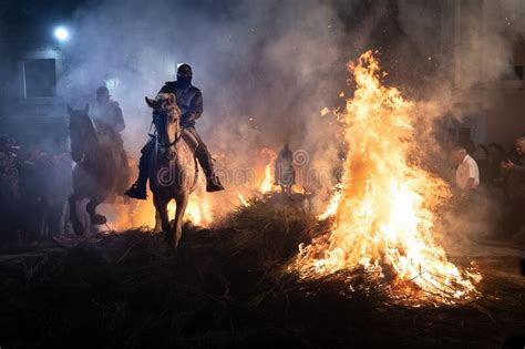 jumping fear horses above fire horse without