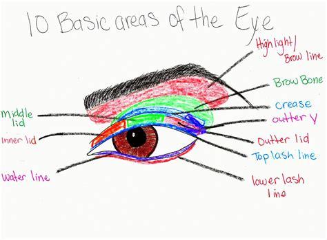 makeup with eye makeup diagrams