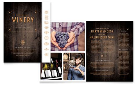 winery brochure template design