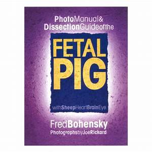 Photo Manual  U0026 Dissection Guide Of The Pig