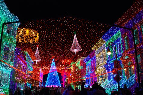 christmas lights at disney world christmas decorating