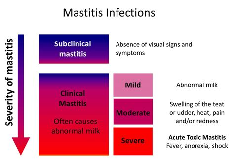 Mastitis Pictures Posters News And Videos On Your