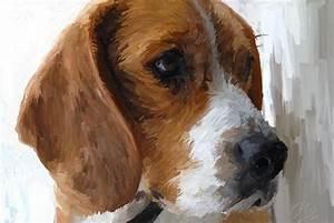 Dog oil painting by Kabukiboy1976 on DeviantArt
