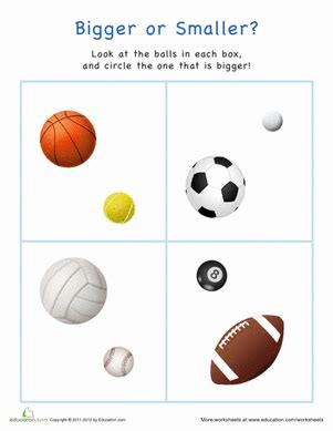 bigger  smaller sports balls worksheet educationcom