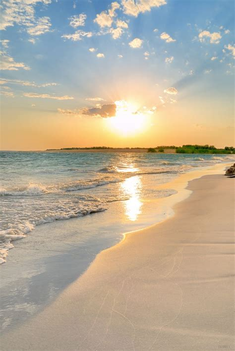 sale photography backdrops baby sunset sea beach