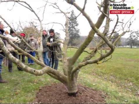 taille d un bureau poitiers la taille des arbres fruitiers n 39 a plus