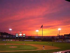 Autographs 4 Alopecia: Game 19: Somerset Patriots 9 ...