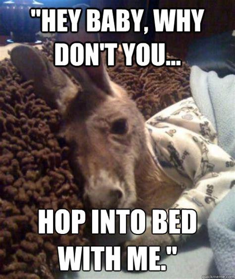 Kangaroo Meme - pillow talk kangaroo memes quickmeme