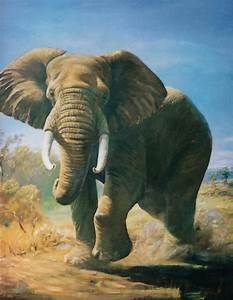 African Elephant Painting by Peter Jean Caley
