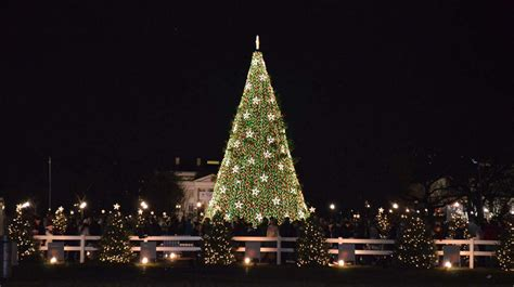 visiting national christmas tree at night 9 fantastic facts about trees fm