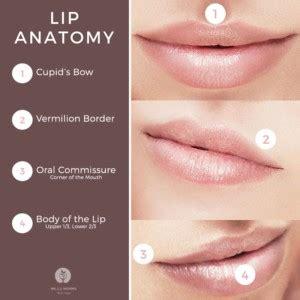 lip surgery dr   wendel plastic surgery nashville tn