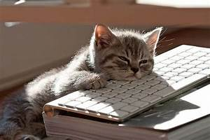 I'm exhausted from all this typing! Tumblr on we heart it ...