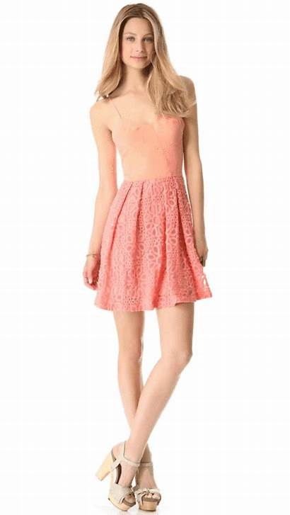 Dresses Lace Wantering Embroidered Skater Silk Skirt