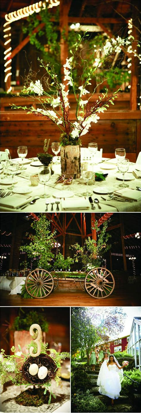 Enchanted Forest Decorations On Pinterest Masquerade