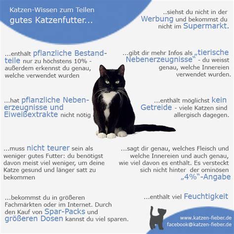 supermarkt katzenfutter giftig katzen