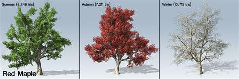 names of maple trees desktop tree package ue4 speedtree
