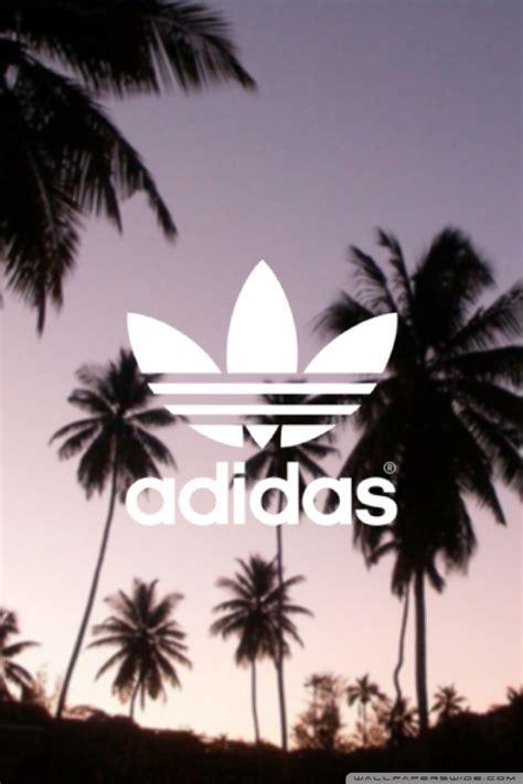 adidas palm trees background  hd desktop wallpaper