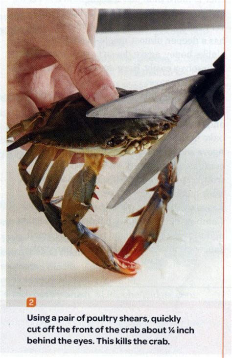crab kills meme cut funny scissors sad head