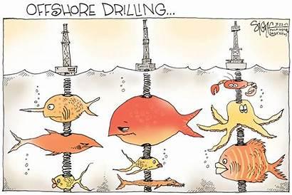 Cartoon Political Offshore Drilling Cartoons Fish Satire