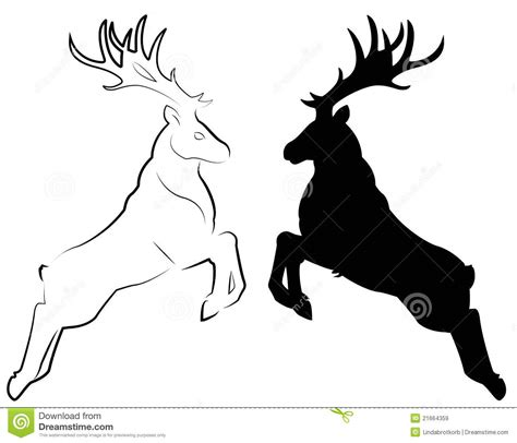 deer royalty  stock images image